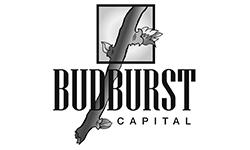 Budburst